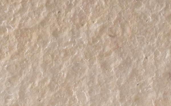 Flamed Leather Limestone
